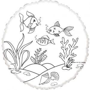 vissen_voor